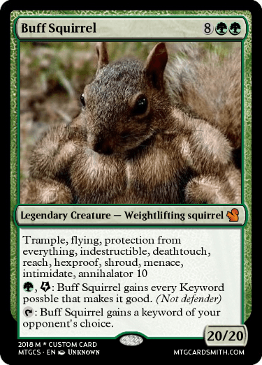 buff squirrel by djurnove mtg cardsmith