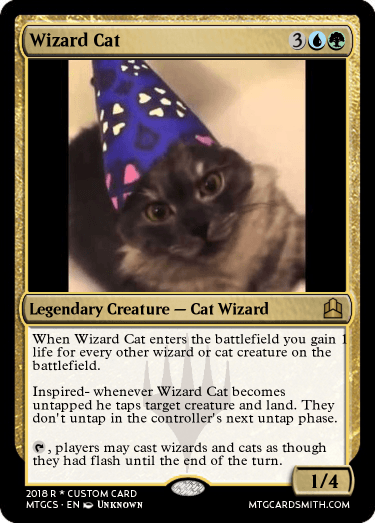 Wizard Cat
