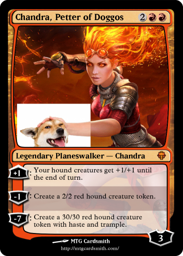 Chandra, Petter of Doggos