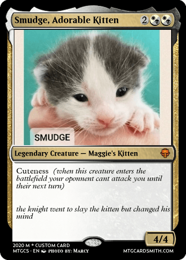 Smudge, Adorable Kitten
