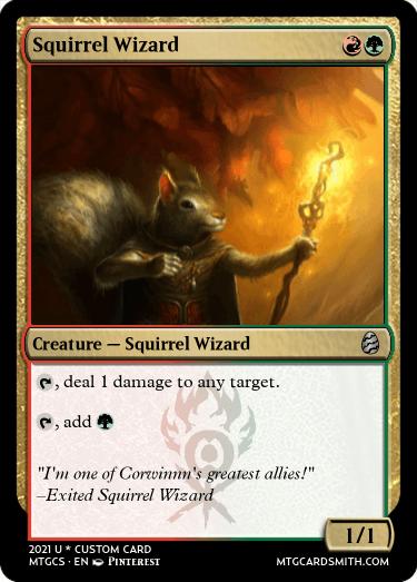 Squirrel Wizard