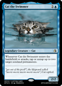 Cat the Swimmer