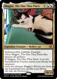 Magpie, The One That Purrs